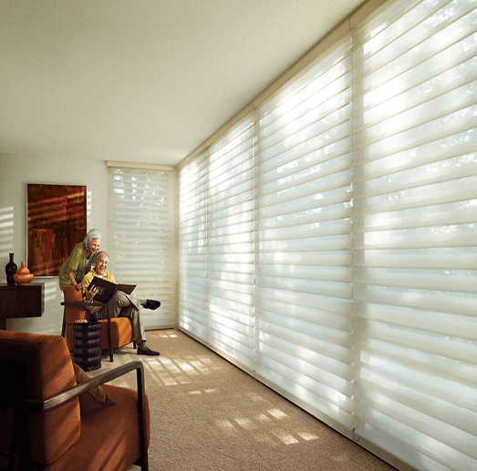 white silhouette blinds in a living room